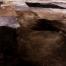 Ковры из шкур овчины А150