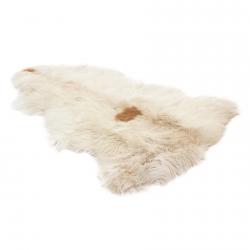 Шкура овцы А1109